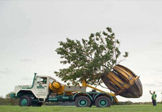 Moving Trees